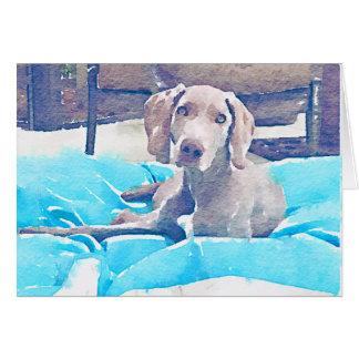 Weimaraner Pup Card