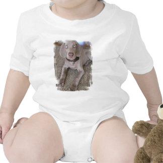 Weimaraner Puppy Baby T-Shirt