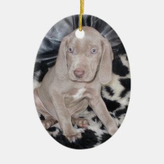 Weimaraner Puppy Ceramic Ornament
