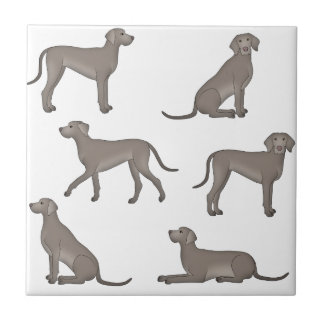 Weimaraner selection tile