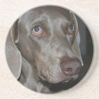 Weimeraner Dog Coasters