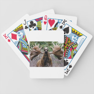 weird bull moose bicycle playing cards