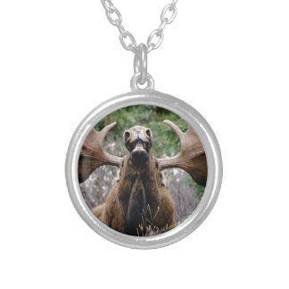 weird bull moose silver plated necklace