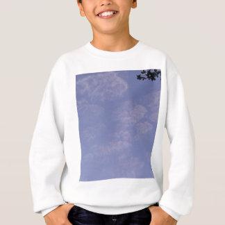 Weird Clouds 1 Sweatshirt