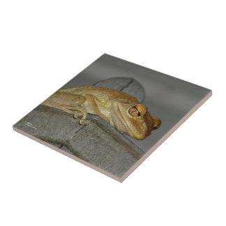 Weird tree frog Tile