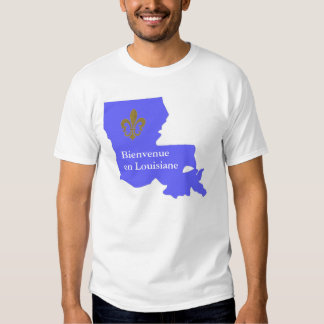 WELCOME TO LOUISIANA BLUE STATE GRAPHIC T-SHIRT