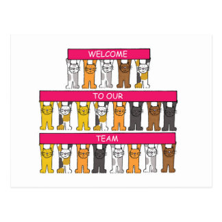 Welcome to our team, cartoon cats. postcard