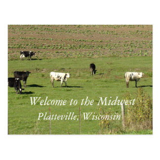 Welcome to the Midwest, Platteville, Wi Postcard