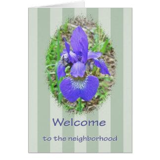 Welcome to the Neighborhood - Siberian Iris Greeting Card