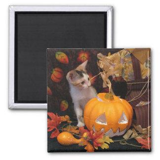 Welcoming Autumn / Halloween Kitty Magnet