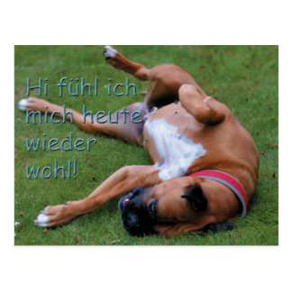 Well-being feeling boxer postcard