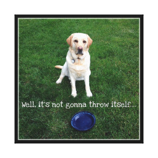 Well It's Not Gonna Throw Itself! Canvas Print