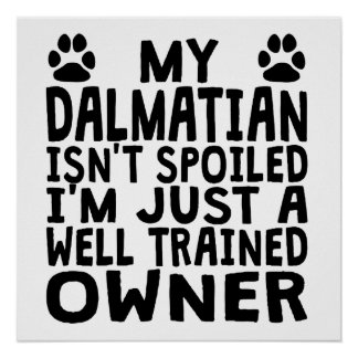 Well Trained Dalmatian Owner Poster