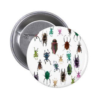 Wellcoda Beetle Type Habitat Insect Life 2 Inch Round Button