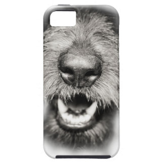 Wellcoda Dog Close Up Face Cool Pet Comic iPhone 5 Case
