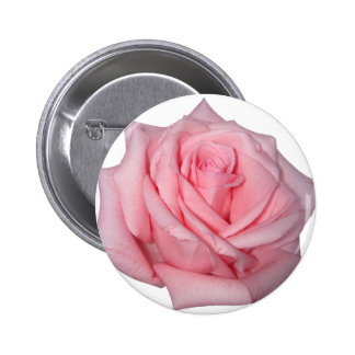 Wellcoda Pink Rose Romantic Flower Power 2 Inch Round Button