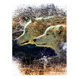 Wellcoda Wild Nature Wolf Pack Lone Grey Postcard