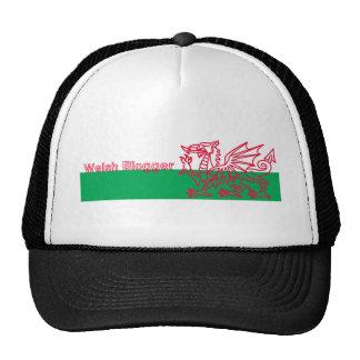 Welsh Blogger Trucker Hat
