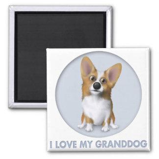 Welsh Corgi 1 Granddog Magnet