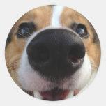 Welsh Corgi Dog Nose Collection Round Sticker
