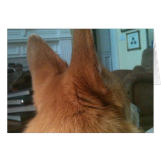 welsh corgi ears card