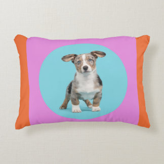 Welsh corgi in fresh colors on a pillow