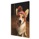 Welsh Corgi Pembroke Wearing A Hand Knitted Hat Canvas Print