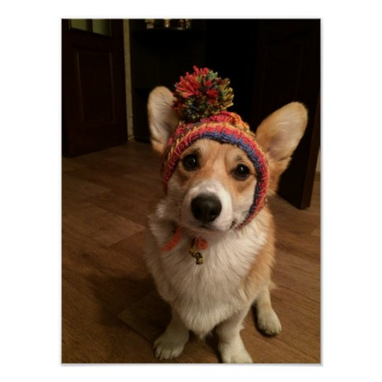 Welsh Corgi Pembroke Wearing A Hand Knitted Hat Poster