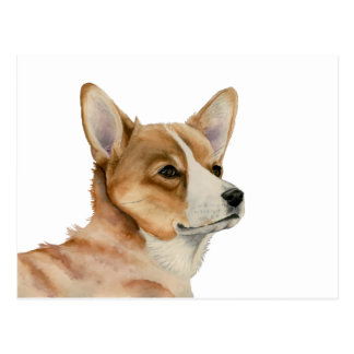 Welsh Corgi Watercolor Painting Postcard