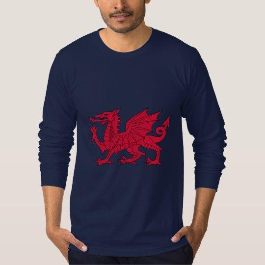 Welsh dragon Hoodie