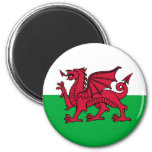 Welsh Dragon Refrigerator Magnet