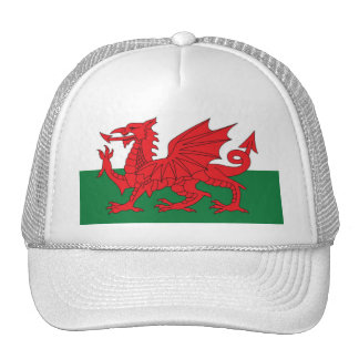 Welsh Flag Cap Trucker Hat