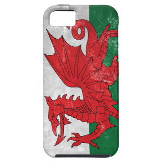 Welsh Flag iPhone 5 Case