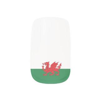 Welsh flag nail set nail art