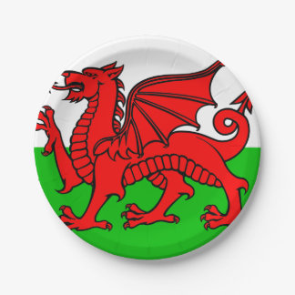 Welsh flag paper plate