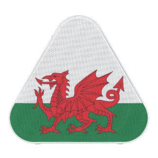 Welsh Flag Speaker