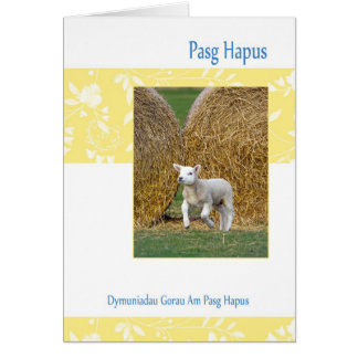 Welsh Pasg Hapus, Easter Card With Spring Lamb