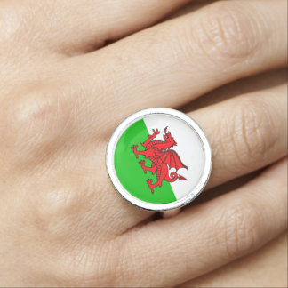 Welsh Red Dragon Wales Flag Photo Rings