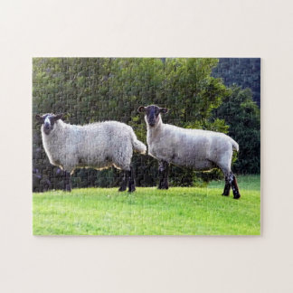 Welsh Sheep Jigsaw Puzzle