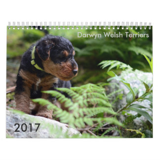 Welsh Terrier 2017 Calendar by Darwyn