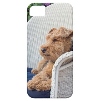 Welsh Terrier Case For The iPhone 5