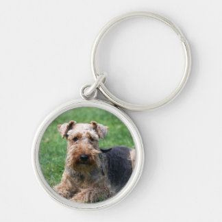 Welsh terrier dog beautiful photo keychain