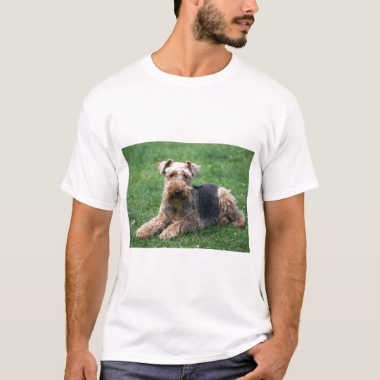 Welsh terrier dog unisex  t-shirt, gift idea T-Shirt