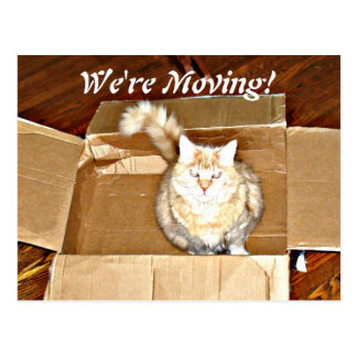 """We're Moving"" Announcement Postcard"