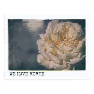 We're Moving Retro Yellow Rose Floral Roses Postcard