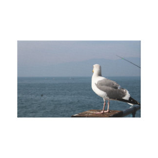 West Coast Gulls Canvas Print