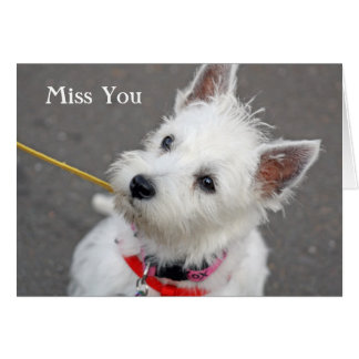 west highland terrier dog miss you card