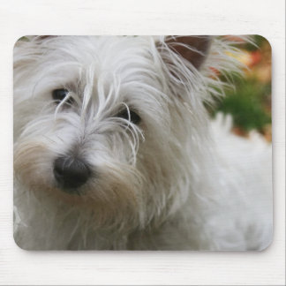 West Highland Terrier Mouse Pad