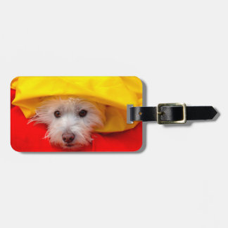 West Highland White Terrier peeking out of yellow Luggage Tag
