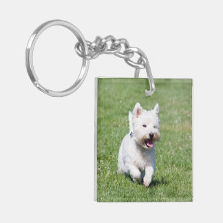 West Highland White Terrier, Westie dog cute photo Double-Sided Square Acrylic Keychain